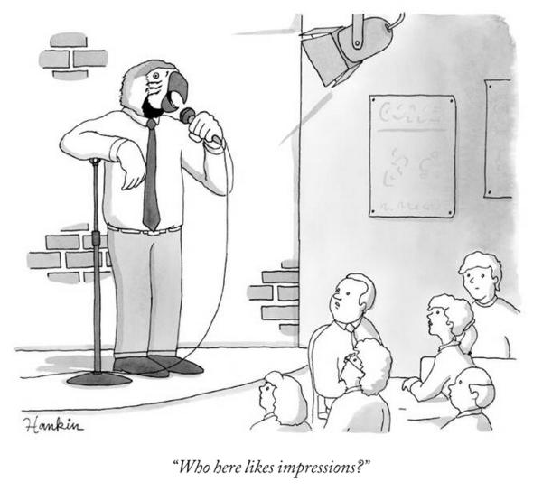 parrotimpressions